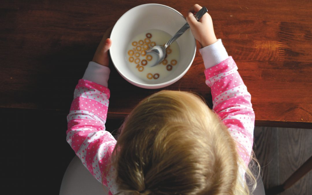 Balanced plate of food: what to include in your family meals?