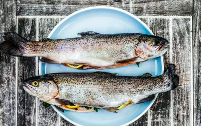 Eating fish during pregnancy: is it safe?