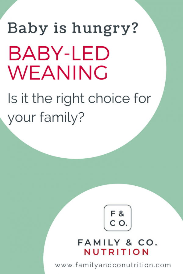 Blog post on comparing baby led weaning and spoon feeding