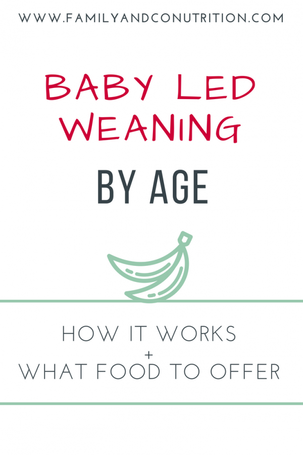 Baby led weaning food ideas and tips by age group